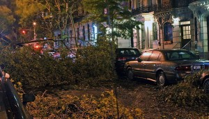 Downed trees due to Hurricane Sandy litter a street on New York City's upper west side. (Mr. Choppers via Wikimedia Commons)